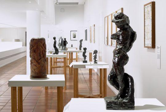 Vue de l'exposition Matisse Métamorphoses